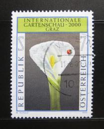 Poštovní známka Rakousko 2001 Výstava zahradnictví Mi# 2305
