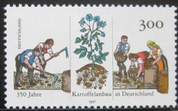 Poštovní známka Nìmecko 1997 Kultivace brambor Mi# 1946
