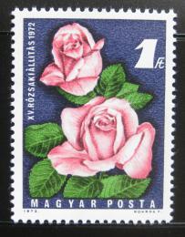 Poštovní známka Maïarsko 1972 Výstava rùží Mi# 2768
