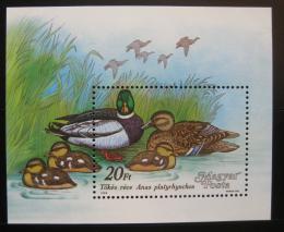 Poštovní známky Maïarsko 1988 Kachny Mi# Block 199