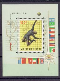 Poštovní známka Maïarsko 1962 MS ve fotbale Mi# Block 34