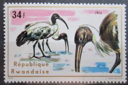Poštovní známka Rwanda 1975 Ibis posvátný Mi# 717