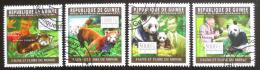 Poštovní známky Guinea 2011 Pandy Mi# 8319-22