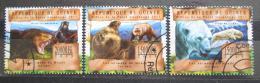 Poštovní známky Guinea 2013 Medvìdi Mi# 9837-39 Kat 20€