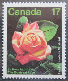Poštovní známka Kanada 1981 Montrealská rùže Mi# 805
