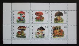 Poštovní známky Burjatsko, Rusko 1998 Houby Mi# N/N