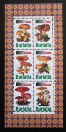Poštovní známky Burjatsko, Rusko - Houby Mi# N/N