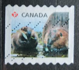 Poštovní známka Kanada 2014 Bobøi Mi# 3087