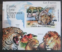 Poštovní známka Komory 2011 Koèkovité šelmy neperf. Mi# 3044 B Block