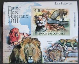 Poštovní známka Komory 2011 Koèkovité šelmy neperf. Mi# 3045 B Block