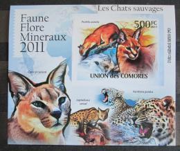 Poštovní známka Komory 2011 Koèkovité šelmy neperf. Mi# 3059 B Block