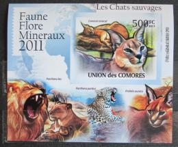 Poštovní známka Komory 2011 Koèkovité šelmy neperf. Mi# 3062 B Block