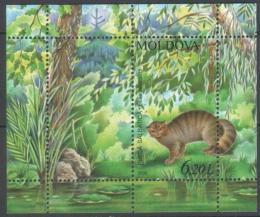 Poštovní známka Moldavsko 2006 Divoká koèka Mi# Block 36