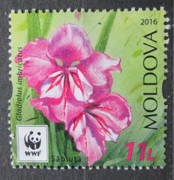 Poštovní známka Moldavsko 2016 Meèík støechovitý Mi# 961 Kat 6€