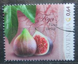 Poštovní známka Slovinsko 2013 Fíkovník smokvoò Mi# 995