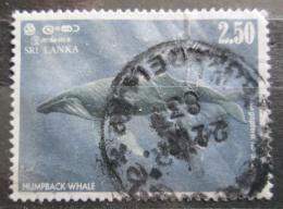 Poštovní známka Srí Lanka 1983 Keporkak Mi# 608