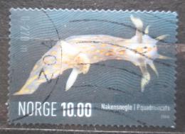 Poštovní známka Norsko 2006 Polycera quadrilineata Mi# 1572