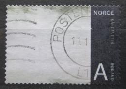 Poštovní známka Norsko 2008 Umìní, Kare Tveter Mi# 1666