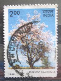 Poštovní známka Indie 1981 Kasie Mi# 880