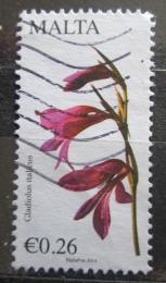 Poštovní známka Malta 2014 Meèík Mii# 1854