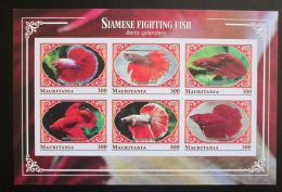 Poštovní známky Mauritánie 2018 Bojovnice pestrá neperf. Mi# N/N