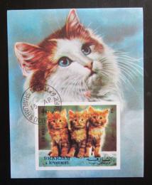 Poštovní známka Šardžá 1972 Ko�ata Mi# Block 120