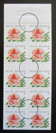 Poštovní známky Belgie 1997 Rododendron Mi# 2784 Kat 8€