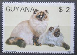 Poštovní známka Guyana 1988 Koèka himalájská Mi# 2084