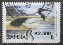 Poštovní známka Zambie 2010 Ibis posvátný pøetisk Mi# 1644