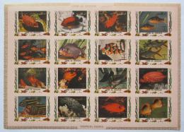 Poštovní známky Umm al-Kuvajn 1972 Ryby DELUXE Mi# 1466-81 B Kat 25€