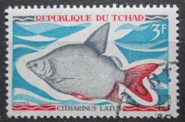 Poštovní známka Èad 1969 Citharinus latus Mi# 283