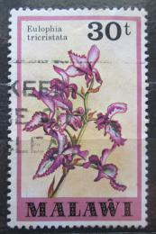 Poštovní známka Malawi 1979 Eulophia tricristata Mi# 313