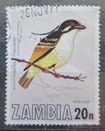 Poštovní známka Zambie 1977 Vousák bìlouzdièkový Mi# 184