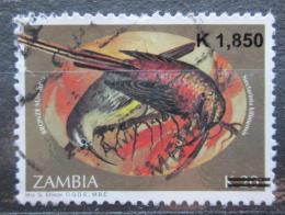 Poštovní známka Zambie 2007 Ptáci pøetisk Mi# 1596 Kat 4€