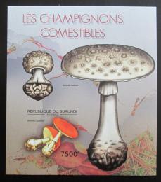 Poštovní známka Burundi 2012 Jedlé houby neperf. Mi# Block 272 B