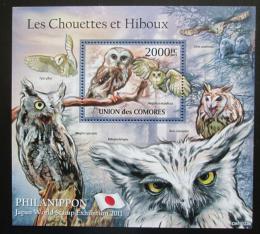 Poštovní známka Komory 2011 Sovy Mi# Block 625 Kat 10€