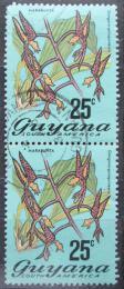 Poštovní známky Guyana 1972 Gongora quinquenervis pár Mi# 403 Kat 20€