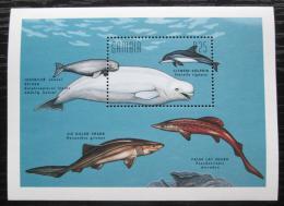Poštovní známka Gambie 1995 Velké ryby Mi# Block 274 Kat 10€