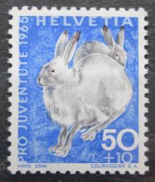 Poštovní známka Švýcarsko 1965 Zajíc bìlák Mi# 830