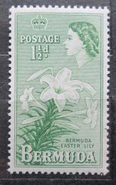 Poštovní známka Bermudy 1953 Lilie Mi# 132