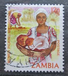 Poštovní známka Zambie 1983 Žena s houbami Mi# 254