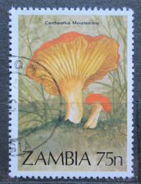 Poštovní známka Zambie 1984 Houby Mi# 328
