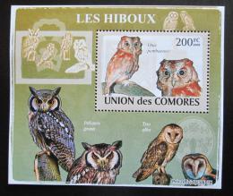 Poštovní známka Komory 2009 Sovy DELUXE Mi# 2191 Block