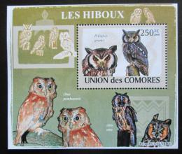 Poštovní známka Komory 2009 Sovy DELUXE Mi# 2192 Block