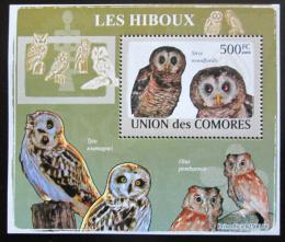 Poštovní známka Komory 2009 Sovy DELUXE Mi# 2195 Block