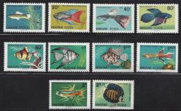 Poštovní známky Maïarsko 1962 Ryby Mi# 1820-29