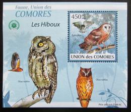 Poštovní známka Komory 2009 Sovy DELUXE Mi# 2412 Block
