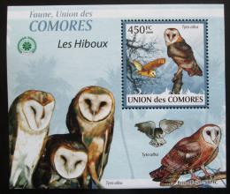 Poštovní známka Komory 2009 Sovy DELUXE Mi# 2413 Block