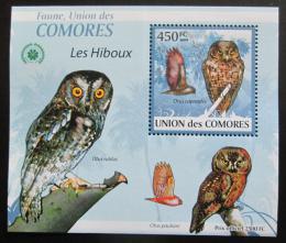 Poštovní známka Komory 2009 Sovy DELUXE Mi# 2415 Block