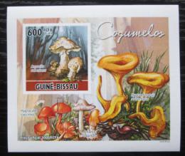 Poštovní známka Guinea-Bissau 2010 Houby DELUXE neperf. Mi# 5161 B Block